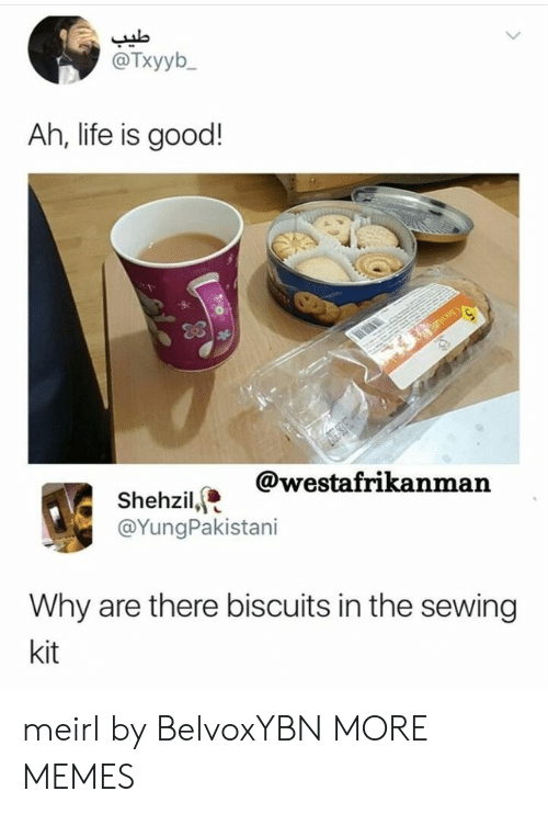 biscuits: @Txyyb  Ah, life is good!  @westafrikanman  Shehzil,  @YungPakistani  Why are there biscuits in the sewing  kit meirl by BelvoxYBN MORE MEMES