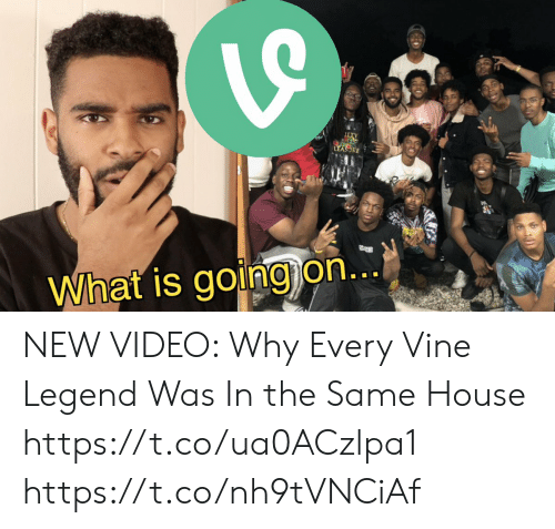 Funny, Vine, and House: TY  LEASORE  What is going on... NEW VIDEO:   Why Every Vine Legend Was In the Same House  https://t.co/ua0ACzlpa1 https://t.co/nh9tVNCiAf