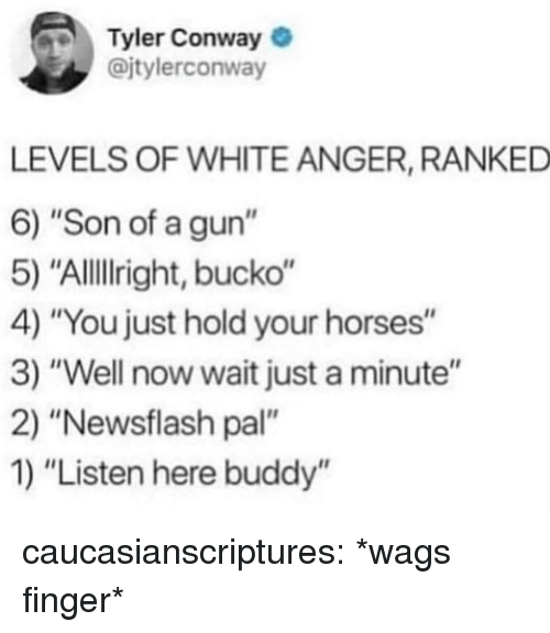 "Conway, Horses, and Tumblr: Tyler Conway  @jtylerconway  LEVELS OF WHITE ANGER, RANKED  6) ""Son of a gun""  5) ""Allillright, bucko""  4) ""You just hold your horses""  3) ""Well now wait just a minute""  2) ""Newsflash pal""  1) ""Listen here buddy'"" caucasianscriptures:  *wags finger*"