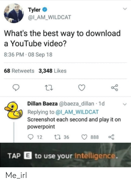 Youtube Video: Tyler  @L_AM_WILDCAT  What's the best way to download  a YouTube video?  8:36 PM 08 Sep 18  68 Retweets 3,348 Likes  Dillan Baeza @baeza_dillan 1d  Replying to @l_AM_WILDCAT  Screenshot each second and play it  powerpoint  t36  888  12  TAP E to use your Intelligence. Me_irl