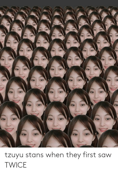 Stans: tzuyu stans when they first saw TWICE