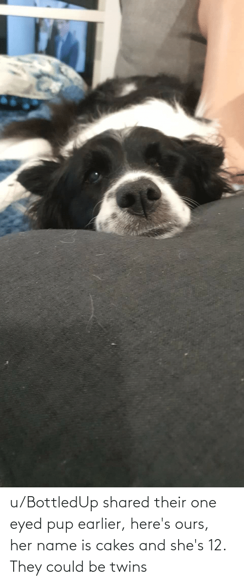 Twins: u/BottledUp shared their one eyed pup earlier, here's ours, her name is cakes and she's 12. They could be twins