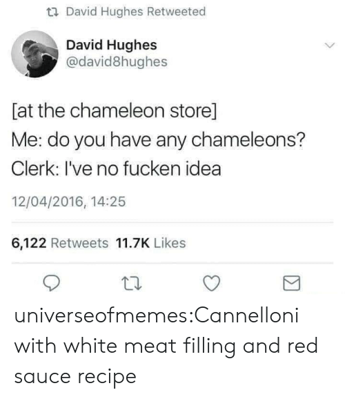 Tumblr, Blog, and Chameleon: u David Hughes Retweeted  David Hughes  @david8hughes  [at the chameleon store]  Me: do you have any chameleons?  Clerk: I've no fucken idea  12/04/2016, 14:25  6,122 Retweets 11.7K Likes universeofmemes:Cannelloni with white meat filling and red saucerecipe