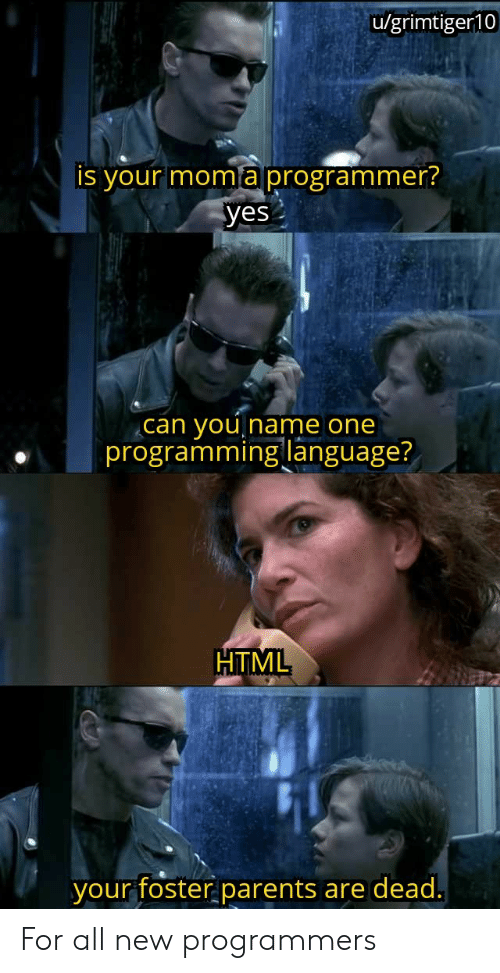 Foster: u/grimtiger10  is your moma programmer?  yes  you  programming language?  can  Iname one  HTML  your foster parents  are dead. For all new programmers