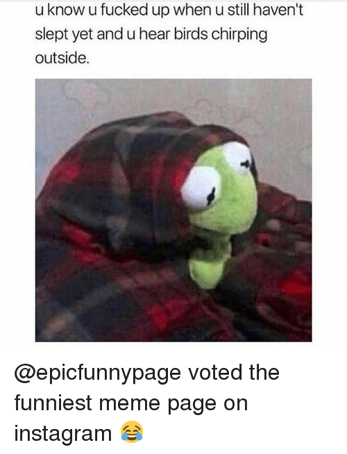 Funny, Instagram, and Meme: u know u fucked up when u still haven't  slept yet and u hear birds chirping  outside. @epicfunnypage voted the funniest meme page on instagram 😂