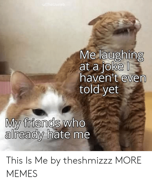 this is me: u/TheUseleb  Me laughing  at a joke  haven't even  told yet  My friends who  already hate me This Is Me by theshmizzz MORE MEMES
