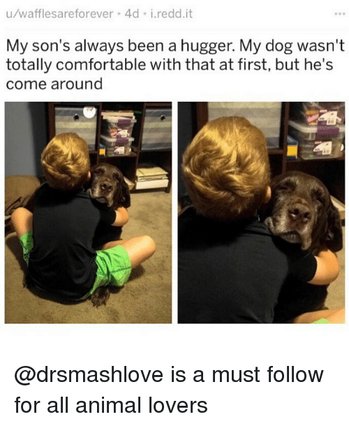 Comfortable, Memes, and Animal: u/wafflesareforever 4d i.redd.it  My son's always been a hugger. My dog wasn't  totally comfortable with that at first, but he's  come around @drsmashlove is a must follow for all animal lovers