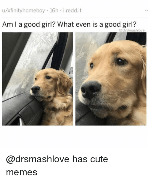 Cute, Funny, and Memes: u/xfinityhomeboy 16h i.redd.it  Am I a good girl? What even is a good girl?  @DrSmashlove @drsmashlove has cute memes
