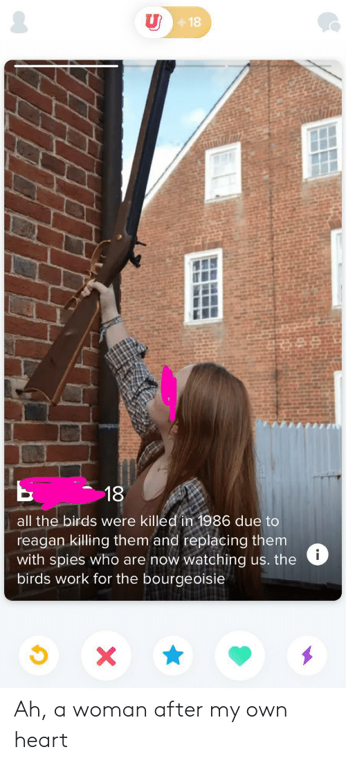 Work, Birds, and Heart: U18  18  all the birds were killed in 1986 due to  reagan killing them and replacing them  with spies who are now watching us. the  birds work for the bourgeoisie  i  x Ah, a woman after my own heart