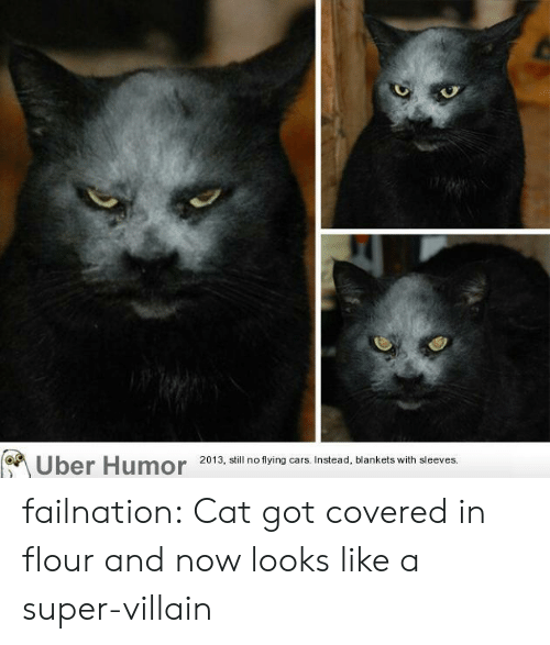 super villain: Uber Humor 2013, i no tying ars Instead, blankets with sleeves failnation:  Cat got covered in flour and now looks like a super-villain