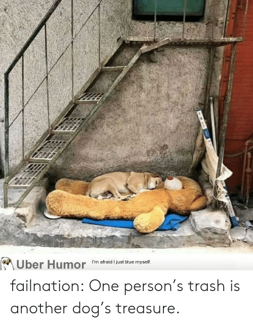 Dogs, Trash, and Tumblr: Uber Humor  I'm afraid I iust blue myself. failnation:  One person's trash is another dog's treasure.