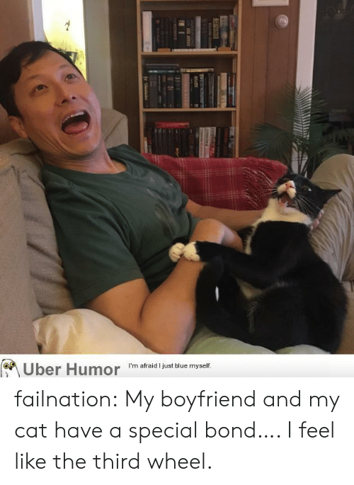 ire: Uber Humor  I'm afraid I just blue myself.  Ire  T ATRE failnation:  My boyfriend and my cat have a special bond…. I feel like the third wheel.