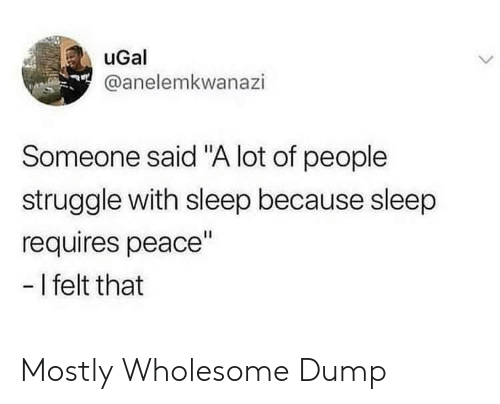 """Struggle, Wholesome, and Peace: uGal  @anelemkwanazi  Someone said """"A lot of people  struggle with sleep because sleep  requires peace""""  -I felt that Mostly Wholesome Dump"""