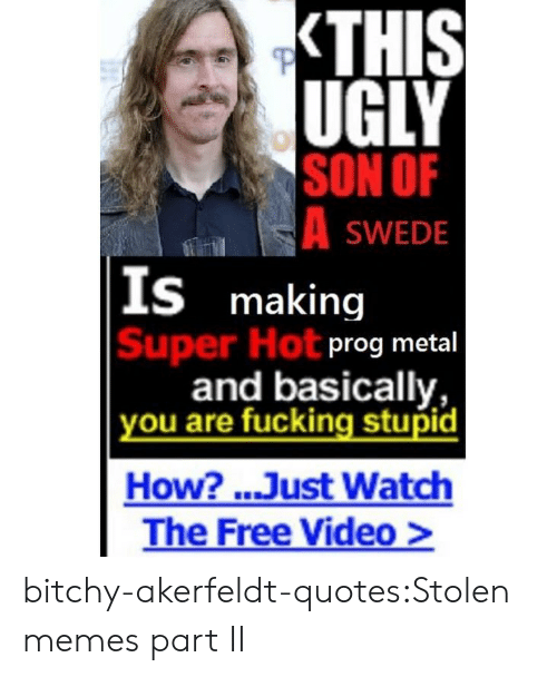 Fucking, Memes, and Tumblr: UGLY  SON OF  SWEDE  S making  Super Hot  prog metal  and basically,  ou are fucking stupid  How? ..Just Watch  The Free Video> bitchy-akerfeldt-quotes:Stolen memes part II
