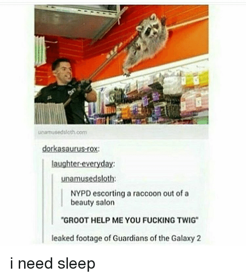 """I Need Sleep: unamusedsfath com  dorkasaurus-rox:  laughter-everyday  unamusedsloth  NYPD escorting a raccoon out of a  beauty salon  """"GROOT HELP ME YOU FUCKING TWIG  leaked footage of Guardians of the Galaxy 2 i need sleep"""