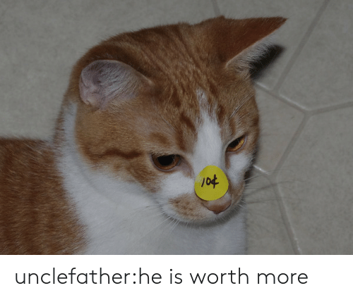 Target, Tumblr, and Blog: unclefather:he is worth more