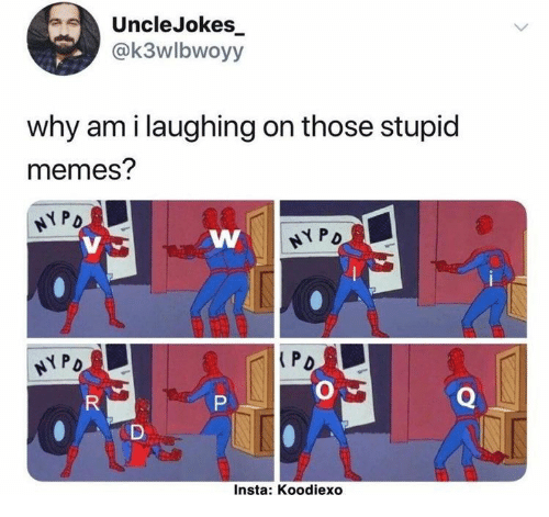 Stupid Memes: UncleJokes  @k3wlbwoyy  why am i laughing on those stupid  memes?  HYPO  NYPO  PD  HYPO  Q  R  P  Insta: Koodiexo