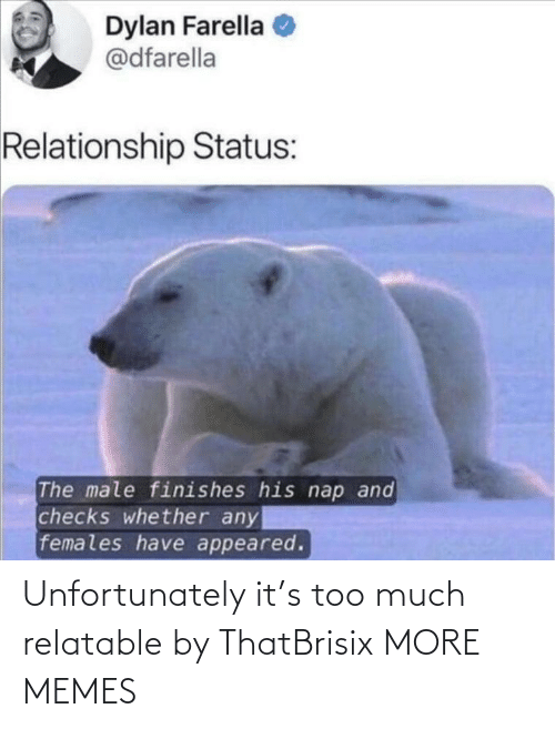 Relatable: Unfortunately it's too much relatable by ThatBrisix MORE MEMES