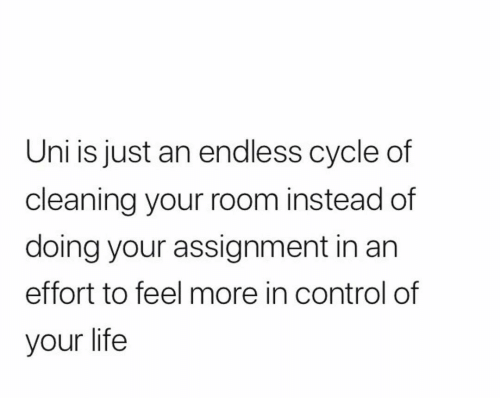 Cleaning Your Room: Uni is just an endless cycle of  cleaning your room instead of  doing your assignment in an  effort to feel more in control of  your life