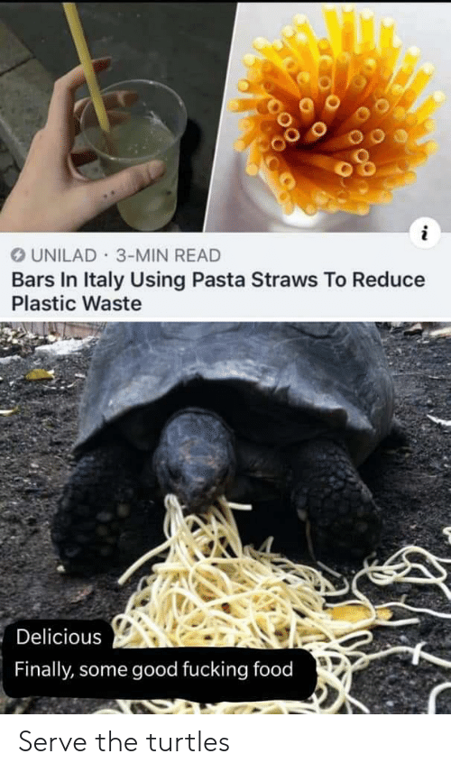 Food, Fucking, and Good: UNILAD 3-MIN READ  Bars In Italy Using Pasta Straws To Reduce  Plastic Waste  Delicious  Finally, some good fucking food Serve the turtles