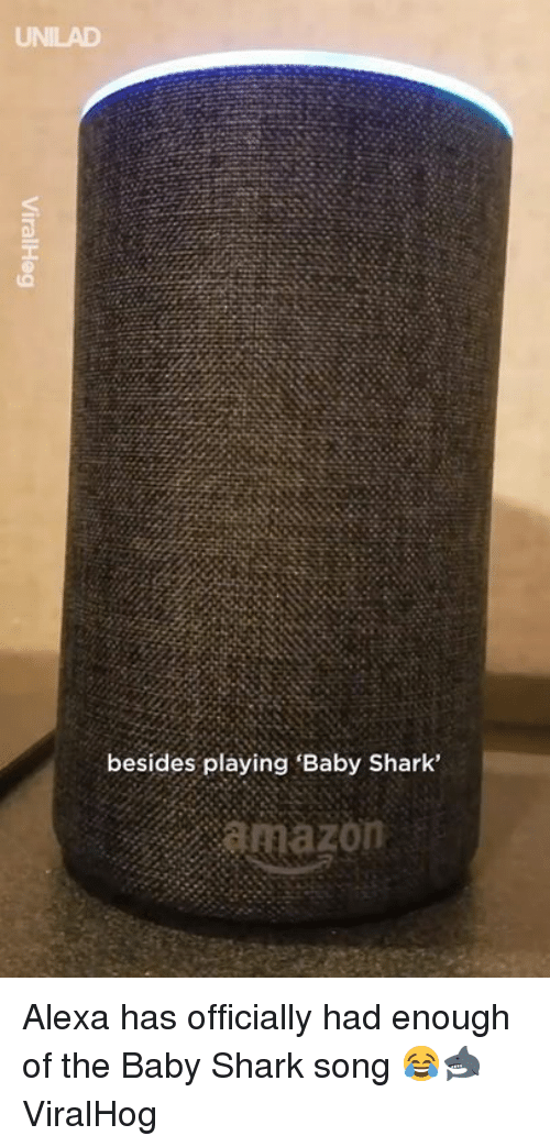 Amazon, Dank, and Shark: UNILAD  besides playing 'Baby Shark'  amazon Alexa has officially had enough of the Baby Shark song 😂🦈  ViralHog