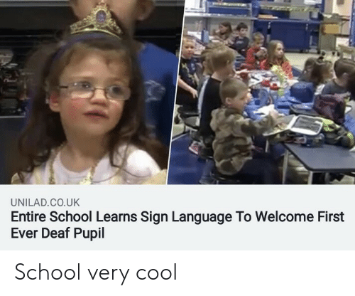 First Ever: UNILAD.CO.UK  Entire School Learns Sign Language To Welcome First  Ever Deaf Pupil School very cool