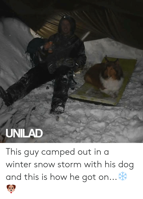 snow storm: UNILAD This guy camped out in a winter snow storm with his dog and this is how he got on...❄️🐶