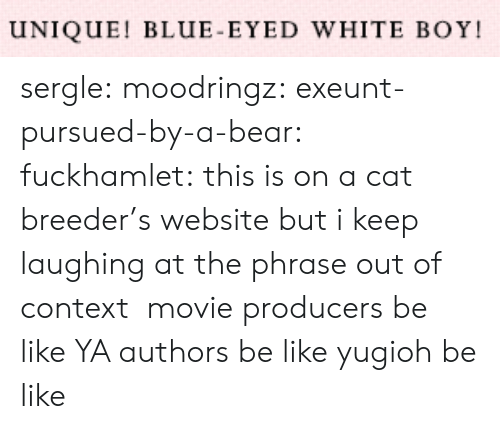 phrase: UNIQUE! BLUE-EYED WHITE BOY sergle: moodringz:  exeunt-pursued-by-a-bear:  fuckhamlet:  this is on a cat breeder's website but i keep laughing at the phrase out of context  movie producers be like   YA authors be like   yugioh be like