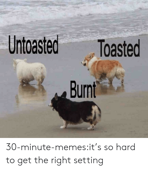 Memes, Target, and Tumblr: Untoasted Toasted 30-minute-memes:it's so hard to get the right setting
