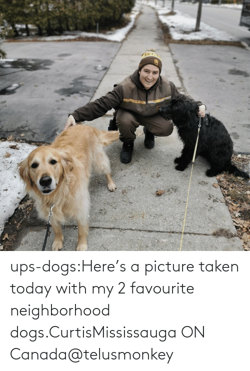 UPS: ups-dogs:Here's a picture taken today with my 2 favourite neighborhood dogs.CurtisMississauga ON Canada@telusmonkey