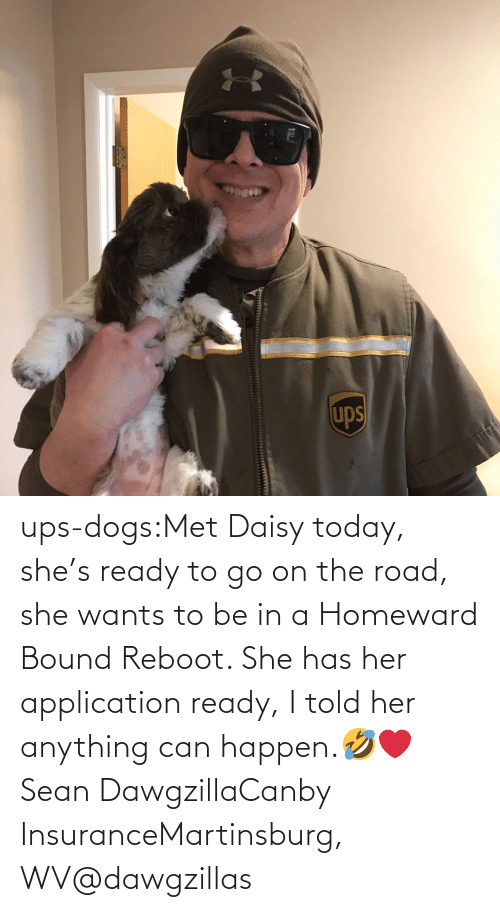 Dogs, Instagram, and Target: ups-dogs:Met Daisy today, she's ready to go on the road, she wants to be in a Homeward Bound Reboot. She has her application ready, I told her anything can happen.🤣❤️ Sean DawgzillaCanby InsuranceMartinsburg, WV@dawgzillas