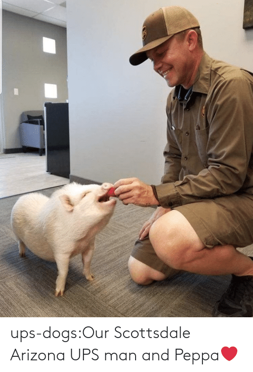 UPS: ups-dogs:Our Scottsdale Arizona UPS man and Peppa❤️