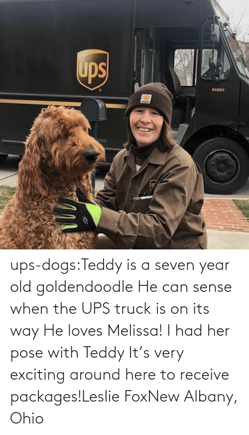 loves: ups-dogs:Teddy is a seven year old goldendoodle He can sense when the UPS truck is on its way He loves Melissa! I had her pose with Teddy It's very exciting around here to receive packages!Leslie FoxNew Albany, Ohio