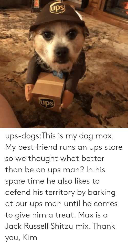 Best Friend, Dogs, and Target: UpS  ups ups-dogs:This is my dog max. My best friend runs an ups store so we thought what better than be an ups man? In his spare time he also likes to defend his territory by barking at our ups man until he comes to give him a treat. Max is a Jack Russell Shitzu mix. Thank you, Kim