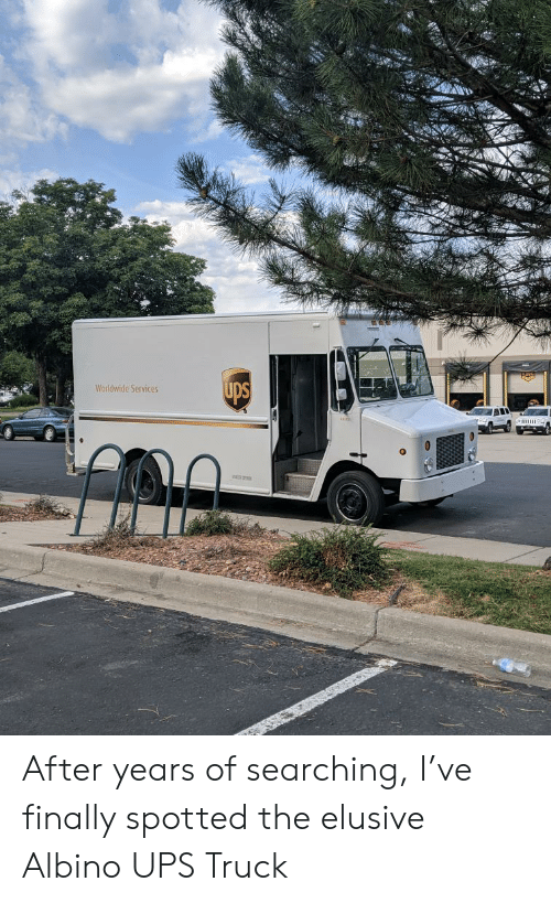 Ups, Albino, and Services: ups  Worldwide Services After years of searching, I've finally spotted the elusive Albino UPS Truck