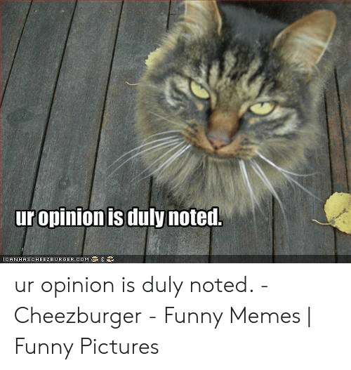 efe962f0 Funny, Memes, and Pictures: ur opinion is duly noted. ICANHASCHEE2BURGER  COM ur