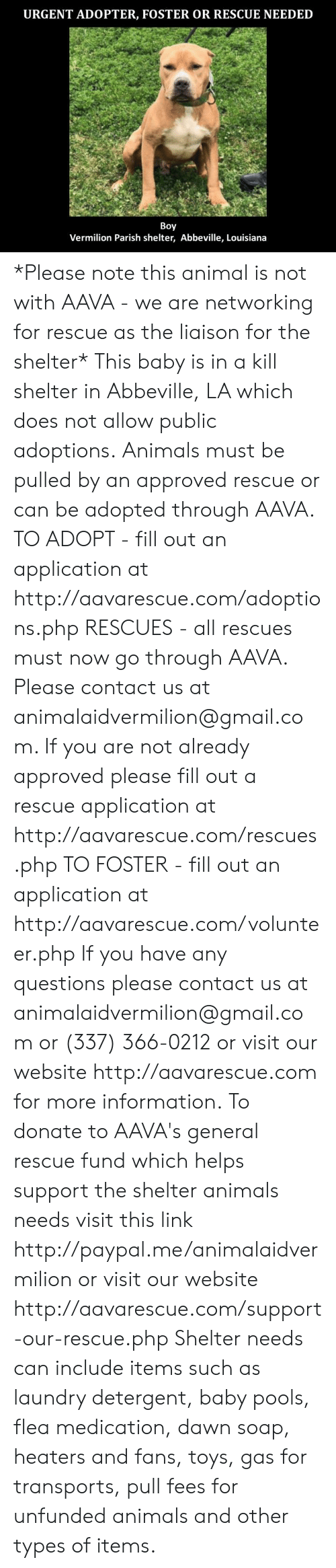 Animals, Laundry, and Memes: URGENT ADOPTER, FOSTER OR RESCUE NEEDED  Boy  Vermilion Parish shelter, Abbeville, Louisiana *Please note this animal is not with AAVA - we are networking for rescue as the liaison for the shelter* This baby is in a kill shelter in Abbeville, LA which does not allow public adoptions. Animals must be pulled by an approved rescue or can be adopted through AAVA.  TO ADOPT - fill out an application at http://aavarescue.com/adoptions.php  RESCUES - all rescues must now go through AAVA. Please contact us at animalaidvermilion@gmail.com. If you are not already approved please fill out a rescue application at http://aavarescue.com/rescues.php  TO FOSTER - fill out an application at http://aavarescue.com/volunteer.php  If you have any questions please contact us at animalaidvermilion@gmail.com or (337) 366-0212 or visit our website http://aavarescue.com for more information.  To donate to AAVA's general rescue fund which helps support the shelter animals needs visit this link http://paypal.me/animalaidvermilion or visit our website http://aavarescue.com/support-our-rescue.php Shelter needs can include items such as laundry detergent, baby pools, flea medication, dawn soap, heaters and fans, toys, gas for transports, pull fees for unfunded animals and other types of items.