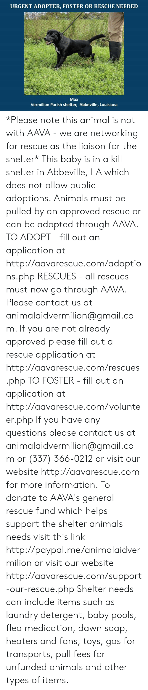 Animals, Laundry, and Memes: URGENT ADOPTER, FOSTER OR RESCUE NEEDED  Max  Vermilion Parish shelter, Abbeville, Louisiana *Please note this animal is not with AAVA - we are networking for rescue as the liaison for the shelter* This baby is in a kill shelter in Abbeville, LA which does not allow public adoptions. Animals must be pulled by an approved rescue or can be adopted through AAVA.  TO ADOPT - fill out an application at http://aavarescue.com/adoptions.php  RESCUES - all rescues must now go through AAVA. Please contact us at animalaidvermilion@gmail.com. If you are not already approved please fill out a rescue application at http://aavarescue.com/rescues.php  TO FOSTER - fill out an application at http://aavarescue.com/volunteer.php  If you have any questions please contact us at animalaidvermilion@gmail.com or (337) 366-0212 or visit our website http://aavarescue.com for more information.  To donate to AAVA's general rescue fund which helps support the shelter animals needs visit this link http://paypal.me/animalaidvermilion or visit our website http://aavarescue.com/support-our-rescue.php Shelter needs can include items such as laundry detergent, baby pools, flea medication, dawn soap, heaters and fans, toys, gas for transports, pull fees for unfunded animals and other types of items.