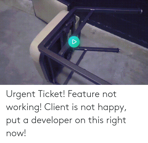 developer: Urgent Ticket! Feature not working! Client is not happy, put a developer on this right now!