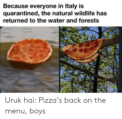pizza: Uruk hai: Pizza's back on the menu, boys