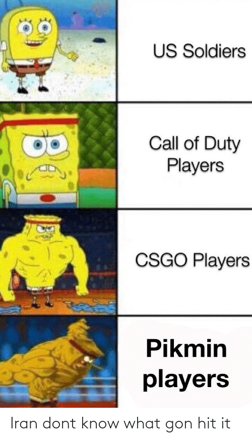 Us Soldiers Call Of Duty Players Csgo Players Pikmin Players Iran