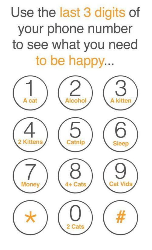 Cats, Money, and Phone: Use the last 3 digits of  your phone number  to see what you need  to be happy  12 (3  A cat  Alcohol  A kitten  2 Kittens  Catnip  Sleep  7(8 (9  Money  4+ Cats  Cat Vids  2 Cats