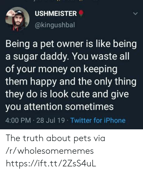 sugar daddy: USHMEISTER  @kingushbal  Being a pet owner is like being  a sugar daddy. You waste all  of your money on keeping  them happy and the only thing  they do is look cute and give  you attention sometimes  4:00 PM 28 Jul 19 Twitter for iPhone The truth about pets via /r/wholesomememes https://ift.tt/2ZsS4uL