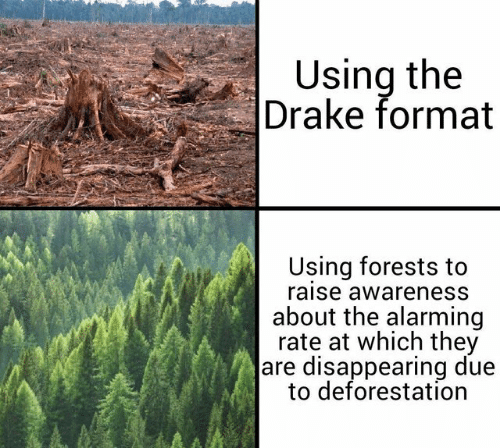 Drake, Alarming, and Format: Using the  Drake format  Using forests to  raise awareness  about the alarming  rate at which they  are disappearing due  to deforestation