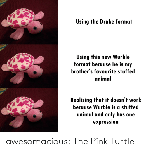 brothers: Using the Drake format  Using this new Wurble  format because he is my  brother's favourite stuffed  animal  Realising that it doesn't work  because Wurble is a stuffed  animal and only has one  expression awesomacious:  The Pink Turtle