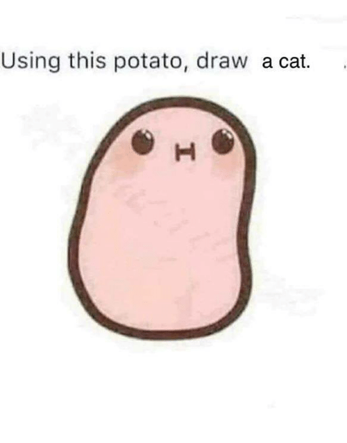 Memes, Potato, and 🤖: Using this potato, draw a cat.
