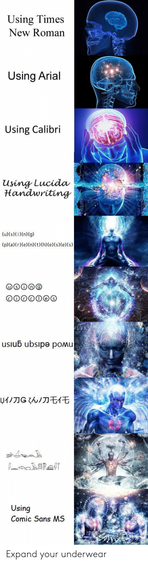 Roman, Ubs, and Comic: Using Times  New Roman  Using Arial  Using Calibri  Using Lucida  Handwriting  usiub ubsıpe pomu  W刀G ζんノ刀モ亻モ  Using  Comic Sans MS Expand your underwear