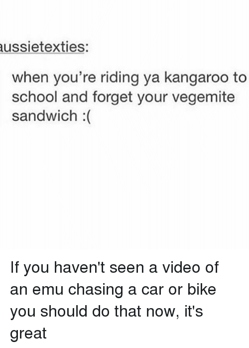 Memes, School, and Video: ussietexties  when you're riding ya kangaroo to  school and forget your vegemite  sandwich :( If you haven't seen a video of an emu chasing a car or bike you should do that now, it's great