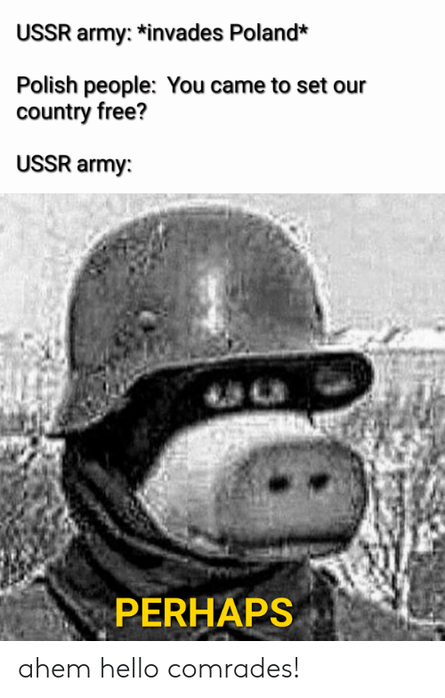 Polish People: USSR army: *invades Poland*  Polish people: You came to set our  country free?  USSR army:  PERHAPS ahem hello comrades!