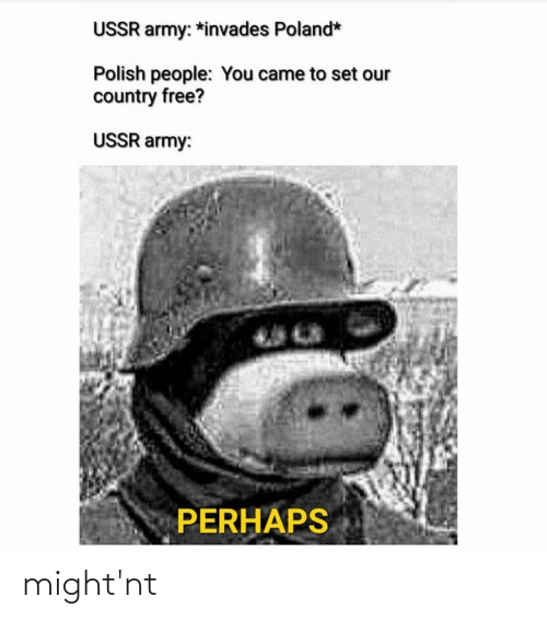 Polish People: USSR army: *invades Poland*  Polish people: You came to set our  country free?  USSR army:  PERHAPS might'nt